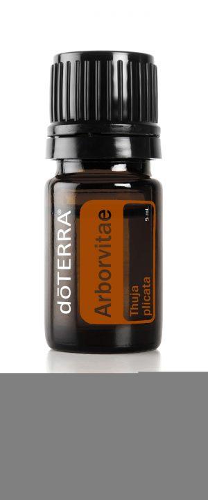 Arborvitae Essential Oil - Aroma Good Stuff Melbourne Australia
